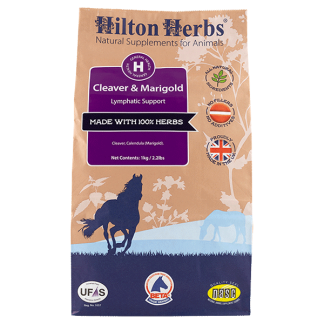 Natural Horse Supplements