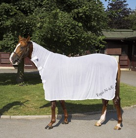Cooling for Horses