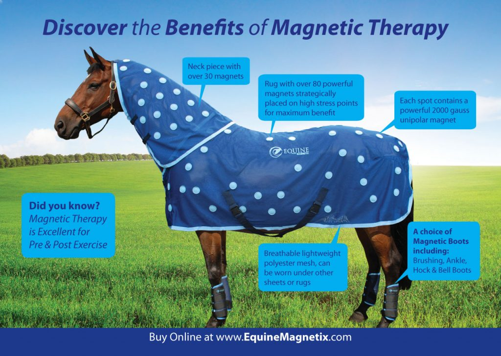 discover-magnetic-therapry1